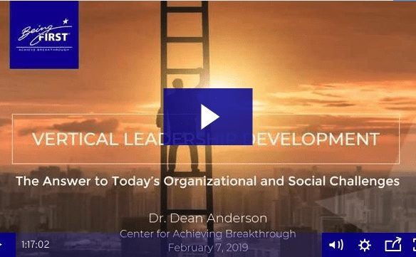 Vertical Leadership Development: Answering Organizational and Social Challenges